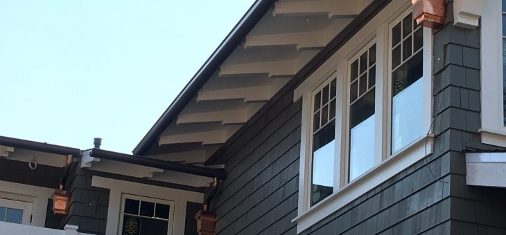 Leader heads and downspouts